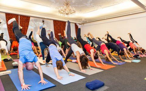 Yogafestival28